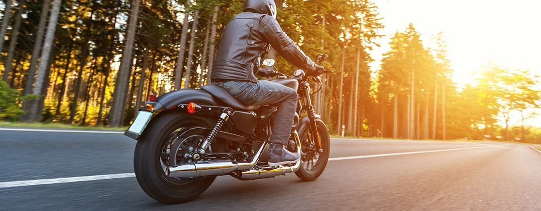 Harley Davidson Sportster  Forty Eight Usata